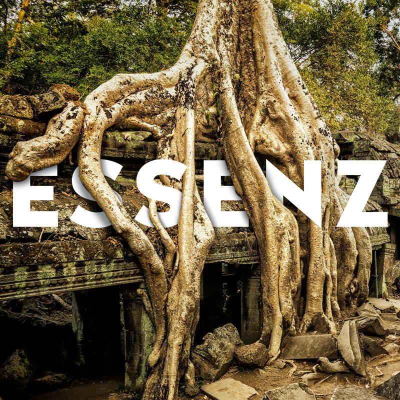 Ankor Wat Dschungeltempel mit der Aufschrift Essenz